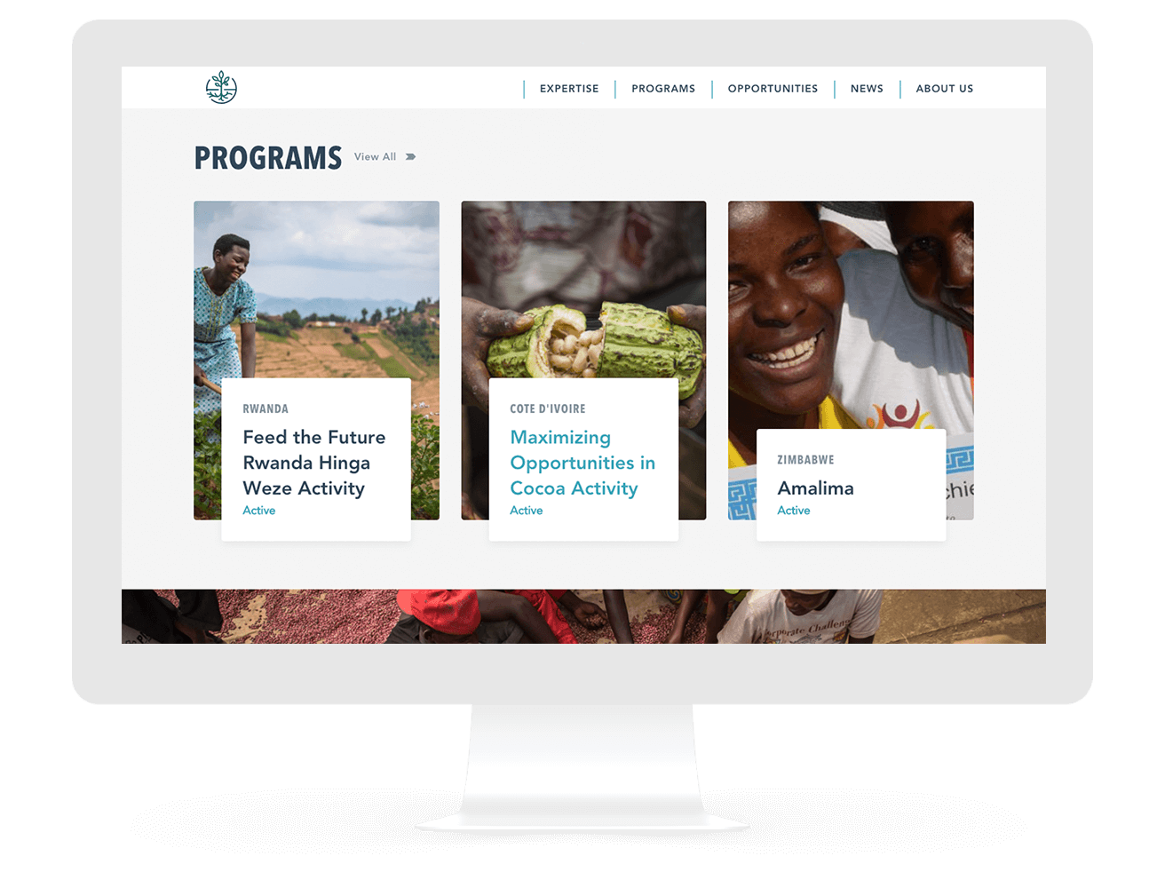 CNFA Nonprofit Web Design